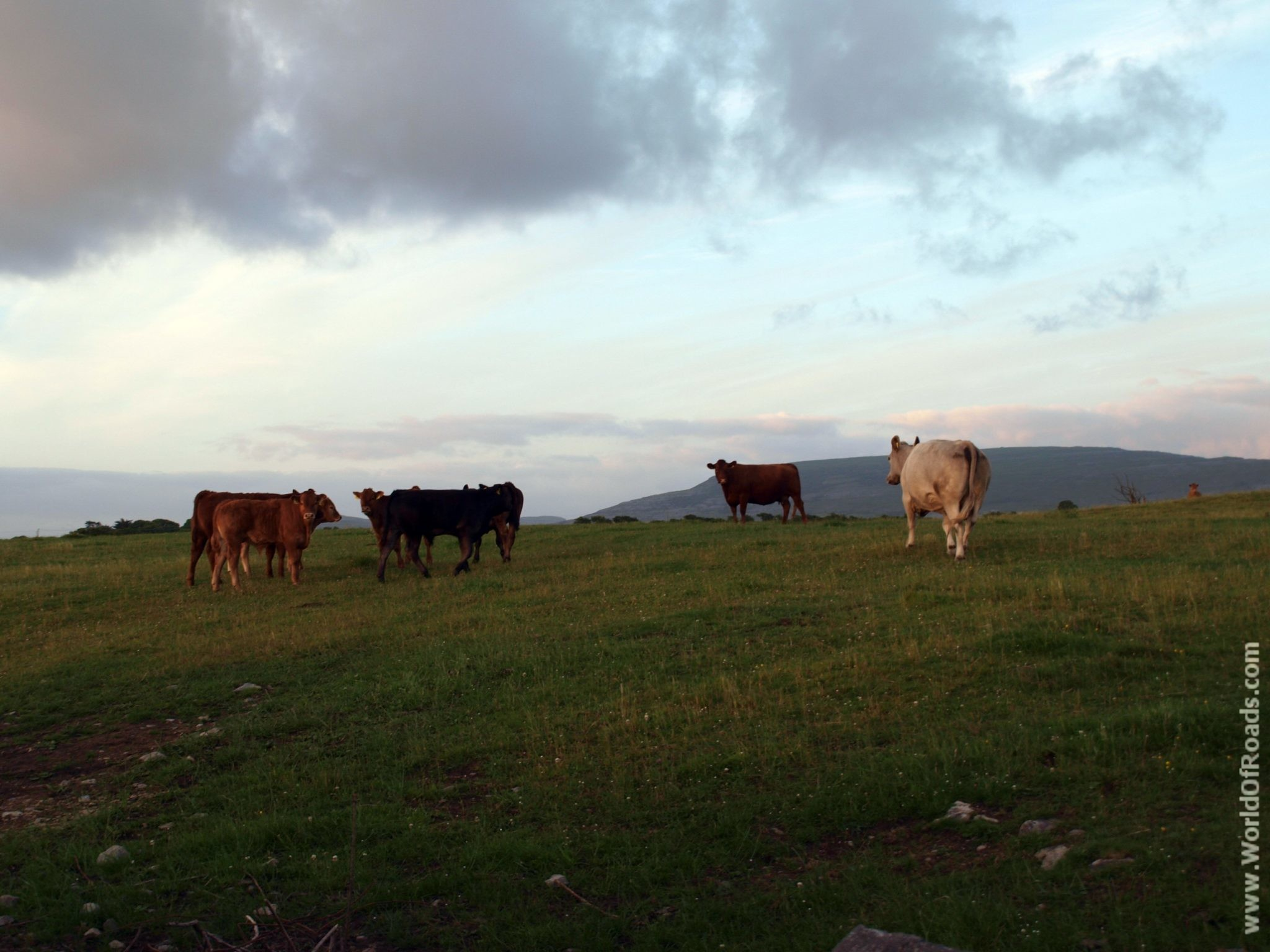 Ирландская сельская местность.