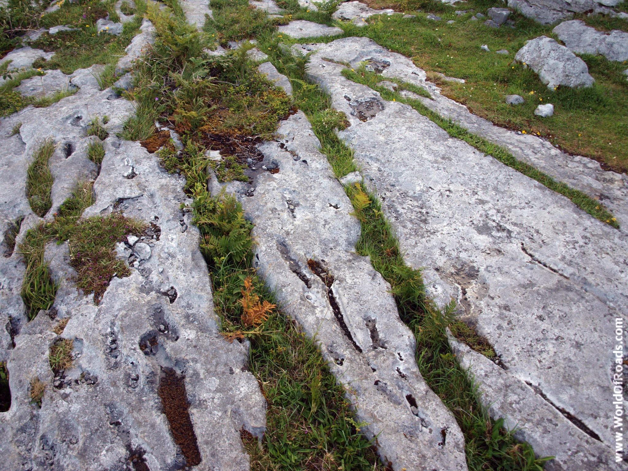 Природа Ирландии. Скальное побережье.