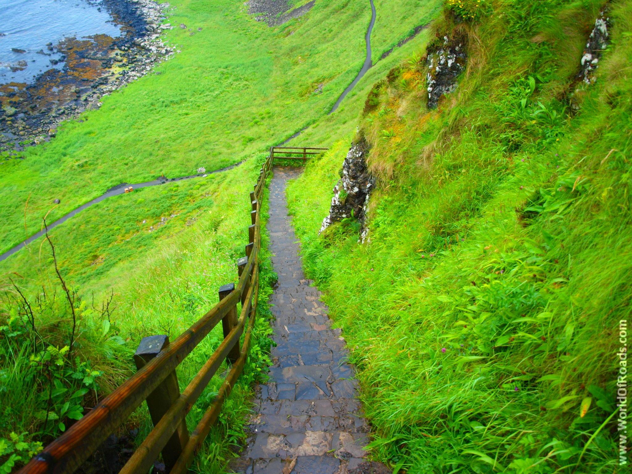 Дорожка к Тропе Гиганта (Giant's Causeway). Северная Ирландия.